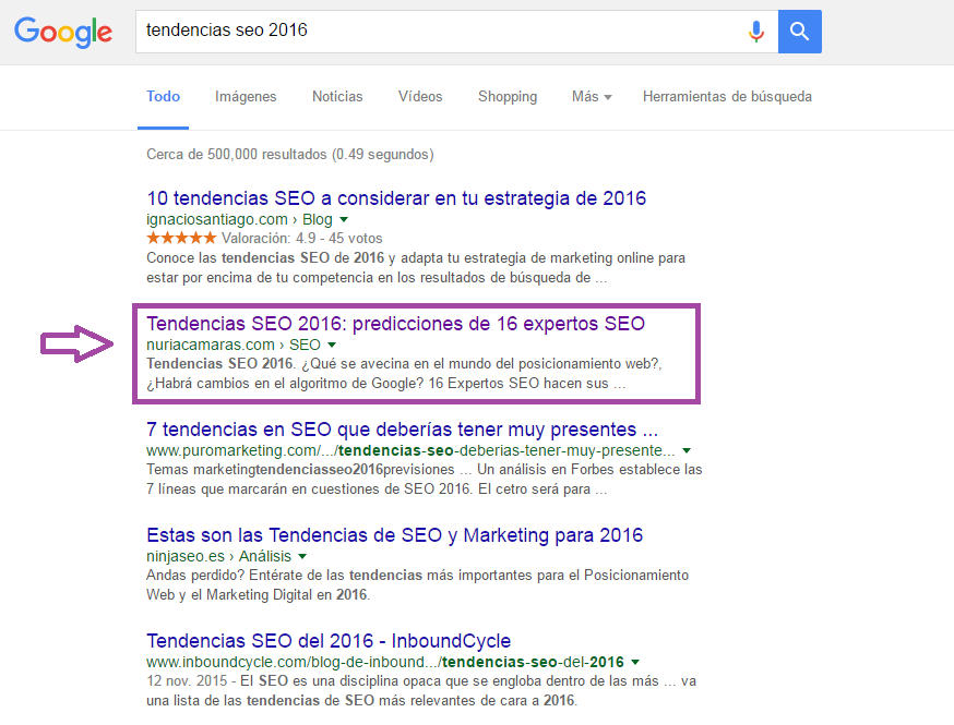 seolyze top 1 en google